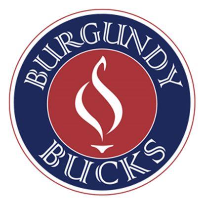 500_burgundy_bucks